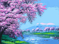 Картина по номерам Сакура над рекой (G113)