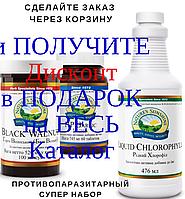 Глисты у детей,Противопаразитарный набор,Черный орех,Чеснок,Хлорофилл