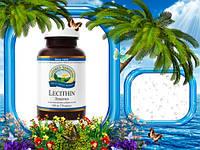 Биодобавка Лeцитин НСП, 170 капсул