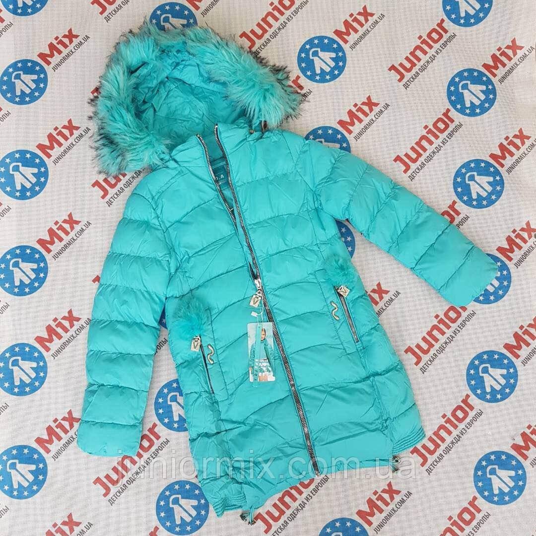 Подростковая зимняя куртка для девочек оптом  SPEED.A.  ПОЛЬША