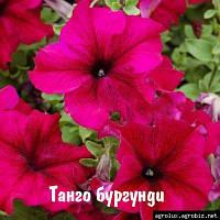 Петуния Танго розовая 1000шт