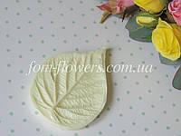 Молд лист малини L
