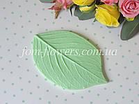 Молд лист универсальный M, фото 1