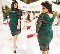 """Элегантное нарядное женское платье в больших размерах Б-06 """"Гипюр Воротничок Контраст"""" в расцветках"""
