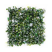 Коврик травяной самшит