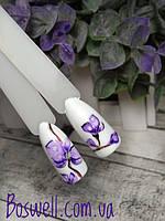 Орхидеи  Урок рисования