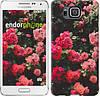 """Чехол на Samsung Galaxy Alpha G850F Куст с розами """"2729c-65-532"""""""