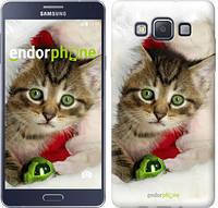 """Чехол на Samsung Galaxy A5 A500H Новогодний котёнок в шапке """"494c-73-532"""""""