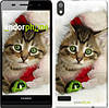 """Чехол на Huawei Ascend P6 Новогодний котёнок в шапке """"494c-39-532"""""""