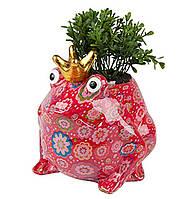 Вазон Жаба - Freddy C керамическая handmade ручная работа оригинальный подарок сувенир +подарок