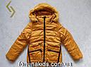 Куртки зимние для девочек Nature 9/10-15/16 лет