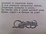 """Райхин Д. """"Белинский в школе"""". Пособие для учителей средней школы. Учпедгиз. 1955 год, фото 6"""