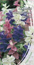 Насіння Квіти Сальвія Трибарвна суміш 0,3 г Насіння України, фото 2