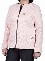 Куртка деми большой размер  50, 52, 54, 56, нежно-розовый