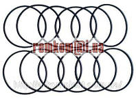 Набор уплотнительных колец гильзы двигателя МТЗ-1221, Д-260 (арт.419)