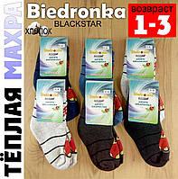 Носки детские зимние с махрой Biedronka Украина тёплые 1-3 года ассорти тачки НДЗ-129
