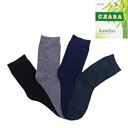 Мужские носки из бамбука Слава B570-1 оптом
