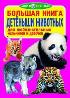 Большая книга.Мир вокруг нас. Детёныши животных