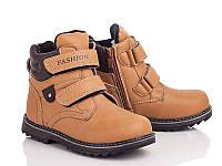 Зимняя обувь Ботинки для мальчиков от фирмы С Луч(31-36)