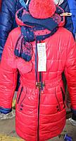 Зимняя куртка  в комплекте с шарфом и шапкой №33