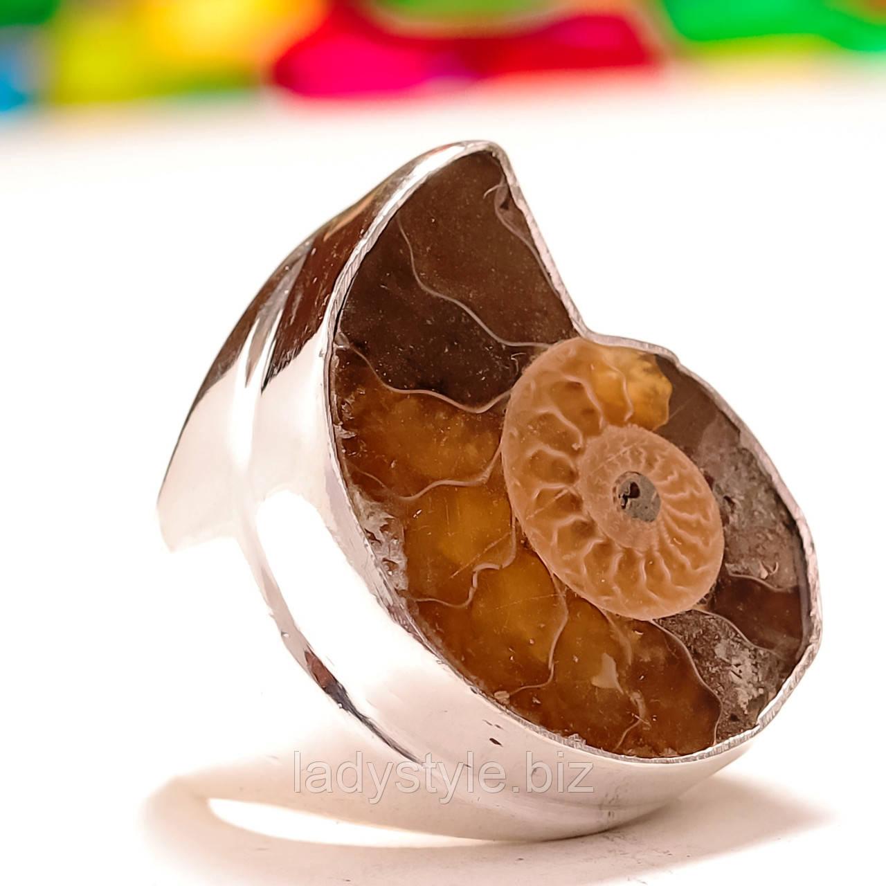 Перстень с аммонитом, размер 17,3