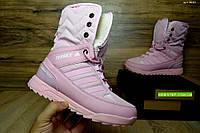 Женские зимние сапоги Adidas Terrex розовые