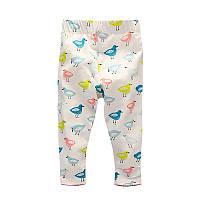Леггинсы для девочки Birds Little Maven