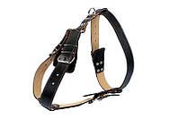 Шлея Collar подвійна для великих собак ширина 35 мм, З: 52-76 см, B: 70-85 см 06481 чорна