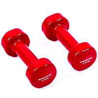 Гантели виниловые IronMaster 2.5 кг красный