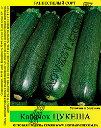 Семена кабачка Цукеша 10 кг (мешок)