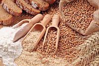 Мука из зародышей пшеницы, 1 кг