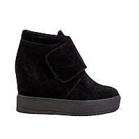 Женские ботинки Aura 7012400-4_2-4-3 черн. замш., фото 1