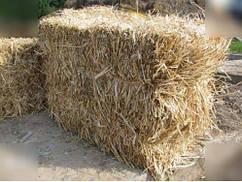 Солома пшенична