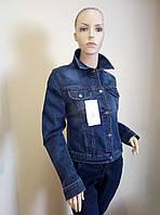 Курточка джинсовая женская 2017 Gloria