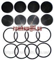 Ремкомплект рабочий (колесный) тормозной цилиндр Нива 4-х кол. (арт.9103)