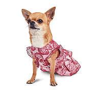 Платье для собачек Алиса XS (23см-26см)