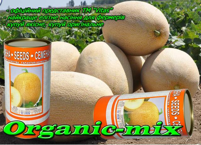 Семена дыни карамель в фермерской упаковке банка 500 грамм