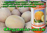 Семена, дыня Ананас (Франция) инкрустированные 500 г  Фермерская банка, ТМ Vitas, фото 2