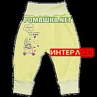 Штанишки на широкой резинке р. 56 демисезонные ткань ИНТЕРЛОК 100% хлопок ТМ Алекс 3297 Зеленый А