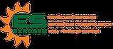 НС Сумо 2017 под гранстар, Семена Сумо под экспресс для Юга. Урожайный подсолнух. Стандарт, фото 4