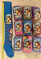 Детские махровые колготки на девочку 104-116 Маша и Медведь