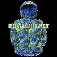 Детская весенняя осенняя куртка р. 86 для мальчика с капюшоном подкладка 100% хлопок 3834 Голубой