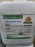 Стимулятор Роста для подкормки по листу Яровых Зерновых АКТИВНЫЙ СТАРТ  гуматы, Аминокислотами, Фитогормоны