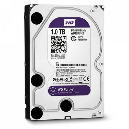 Western Digital Purple 1TB 64MB WD10PURX 3.5 SATA III, фото 2