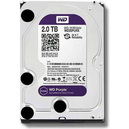 Western Digital Purple 2TB 64MB WD20PURX 3.5 SATA III, фото 2