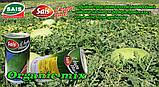 Семена арбуза, ЧАРЛЬСТОН ГРЕЙ / CHARLESTON GREY, ТМ Sais, Италия, ж/б банка 500 грамм, фото 2