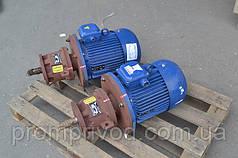 Мотор-редуктор 6МП-31,5