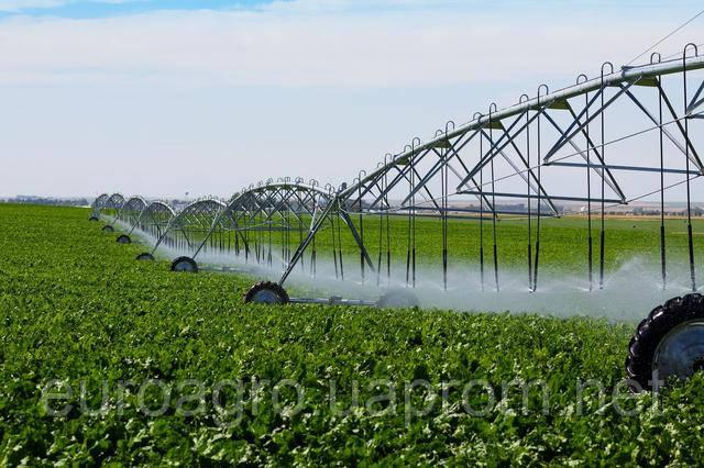 Отсутствие орошения приносит украинским фермерам миллиардные убытки