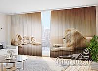 """Фото Шторы в зал """"Львиная семья"""" 2,7м*4,0м (2 полотна по 2,0м), тесьма"""