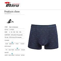 Мужские боксеры стрейчевые марка «INDENA» АРТ.75003, фото 3